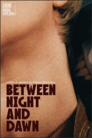 Between Night And Dawn 2021