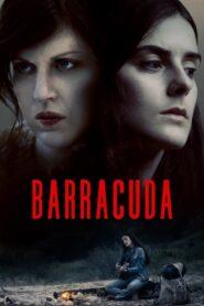 Barrakuda 2017