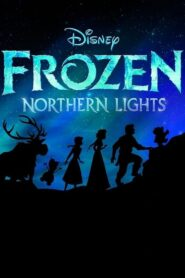 LEGO Frozen Northern Lights 2016