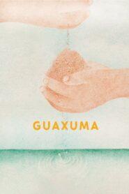 Guaxuma 2019