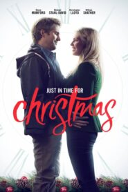 Just in Time for Christmas 2015