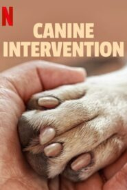 Canine Intervention 2021