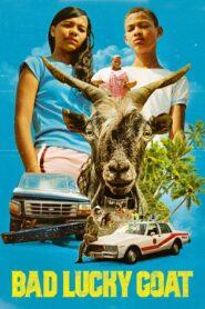 Bad Lucky Goat 2017