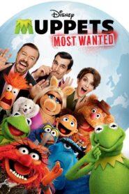 Muppety: Poza Prawem 2014