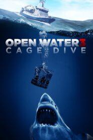 Cage Dive 2017