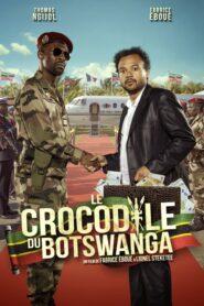 Le crocodile du Botswanga 2014