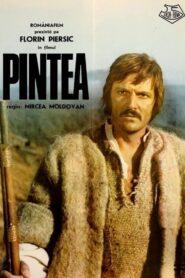Pintea 1976