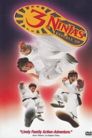Małolaty Ninja na wojennej ścieżce 1994