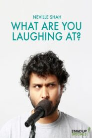 Neville Shah : What Are You Laughing At? 2017
