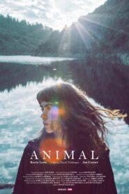 Animal 2019