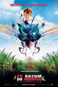 Po rozum do mrówek 2006