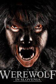A Werewolf in Slovenia 2014