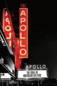 The Apollo 2019