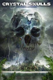 Crystal Skulls 2014