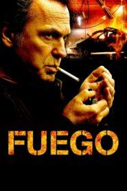 Fuego 2014