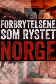 Forbrytelsene som rystet Norge 2021