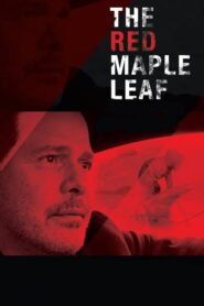 The Red Maple Leaf 2017