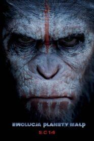 Ewolucja planety małp 2014
