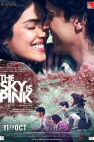 The Sky Is Pink 2019