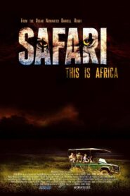 Safari 2013