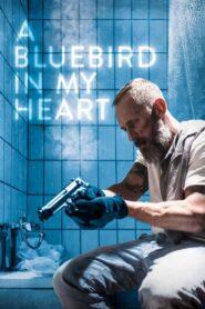 Niebieski ptak w moim sercu 2018