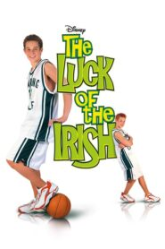 Irlandzkie szczęście 2001