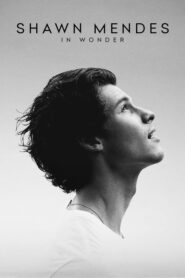 Shawn Mendes: In Wonder 2020
