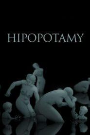 Hipopotamy 2014