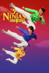 Małolaty ninja wracają 1994