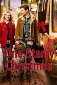 One Starry Christmas 2014