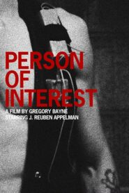 Person of Interest 2010