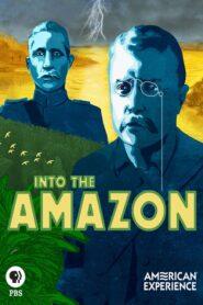 Into the Amazon 2018