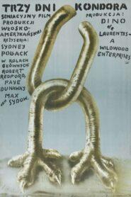 Trzy dni kondora 1975