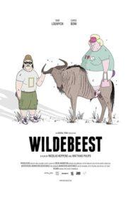 Wildebeest 2017
