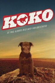 Koko: A Red Dog Story 2019
