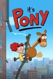 It's Pony 2020