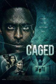Caged 2021
