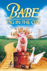 Babe: Świnka w mieście 1998