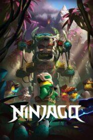 Ninjago: The Island 2021