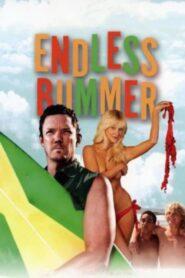 National Lampoon Presents: Endless Bummer 2014