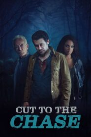 Cut to the Chase 2017