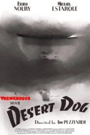 Desert Dog 2020