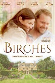 Birches 2018