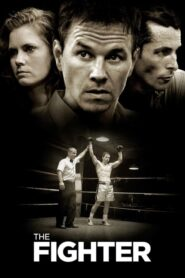 Fighter 2010