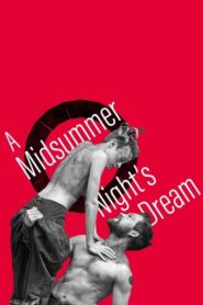 A Midsummer Night's Dream: Live from Shakespeare's Globe 2013