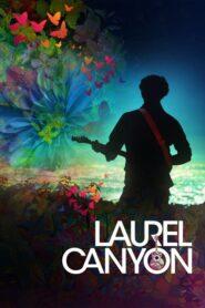 Laurel Canyon 2020