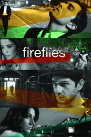 Fireflies 2014