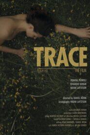 Trace 2014