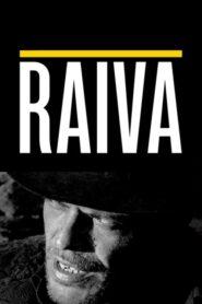 Raiva 2018