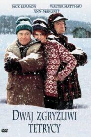 Dwaj Zgryźliwi Tetrycy 1993